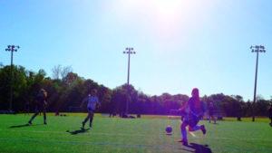 Sunny turf field