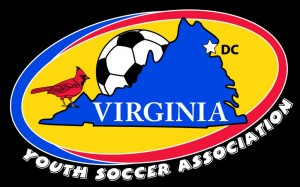 VYSA new logo shield